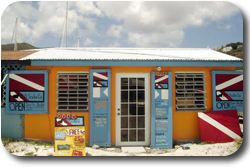 bvi dive center